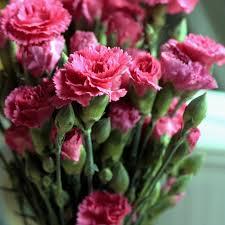 Как сделать чтобы розы дольше простояли в
