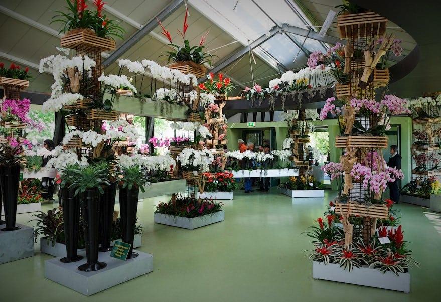 Магазин мир цветов и дизайна, индивидуальному