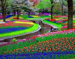 Цветочный парк Кёкенхоф (Нидерланды)