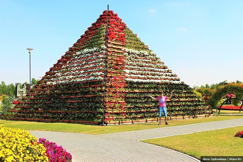 Пирамида из цветов