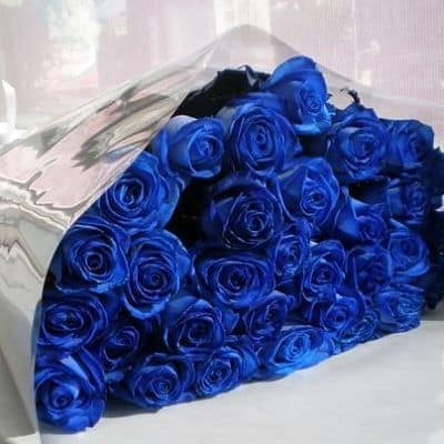 Голубые или синие розы