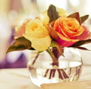 Как сохранить розы в вазе свежими