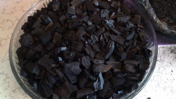 древесный уголь для орхидеи